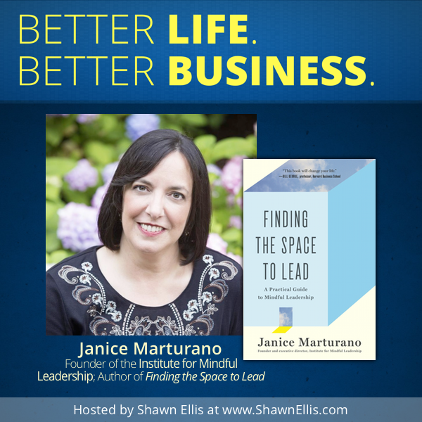 Janice Marturano Interview - Better Life Better Business Podcast